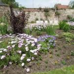 1798 Street Flowerbeds
