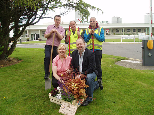 let s bee friendly in wexford wexford tidy towns